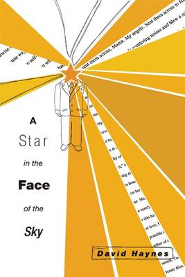 A Star in the Face of the Sky by David Haynes