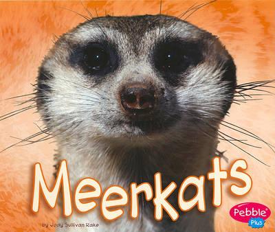 Meerkats by Jody Sullivan Rake