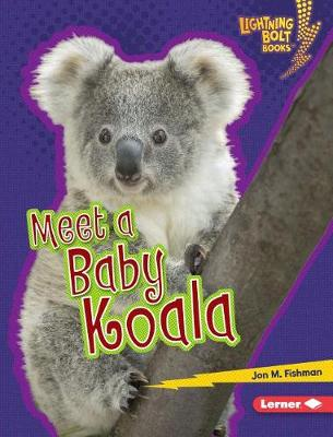 Meet a Baby Koala by Jon M Fishman