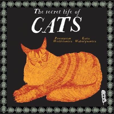 The Secret Lives of Cats by Przemyslaw Wechterowicz