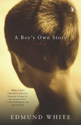 Boy's Own Story book