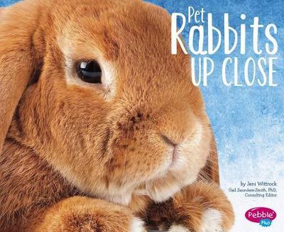 Pet Rabbits Up Close by Jeni Wittrock