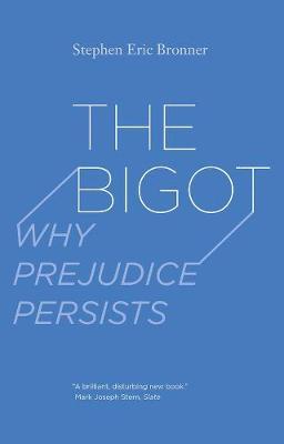 Bigot by Stephen Eric Bronner