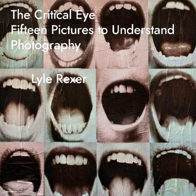 The Critical Eye: Fifteen Pictures to Understand Photography book