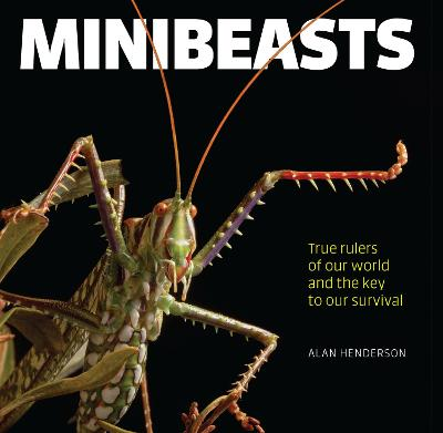 Minibeasts: True rulers of our world and the key to our survival by Alan Henderson