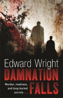 Damnation Falls by Edward Wright