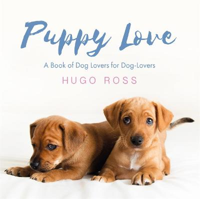 Puppy Love by Hugo Ross