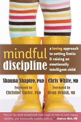 Mindful Discipline by Shapiro L