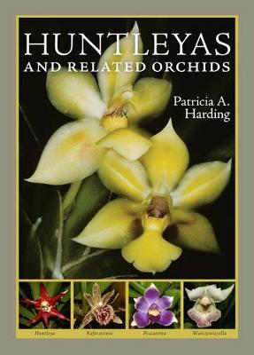 Huntleyas and Related Orchids by Patricia A. Harding