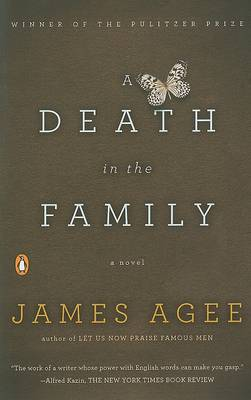 Death in the Family book