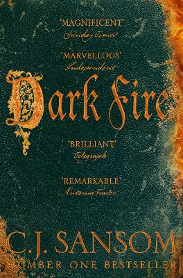 Dark Fire book