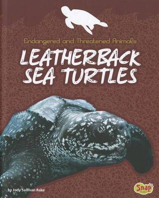 Leatherback Sea Turtles by Jody Sullivan Rake