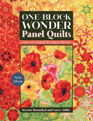One-Block Wonder Panel Quilts: New Ideas; One-of-a-Kind Hexagon Blocks by Maxine Rosenthal