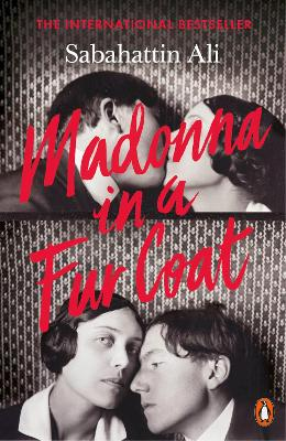 Madonna in a Fur Coat book