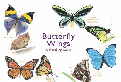 Butterfly Wings: A Matching Game by Christine Berrie