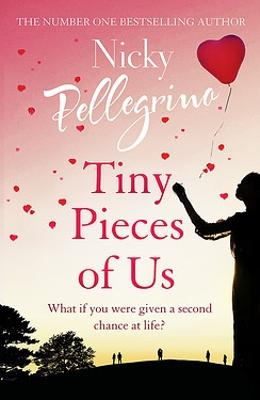 Tiny Pieces of Us book