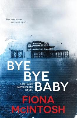 Bye Bye Baby book
