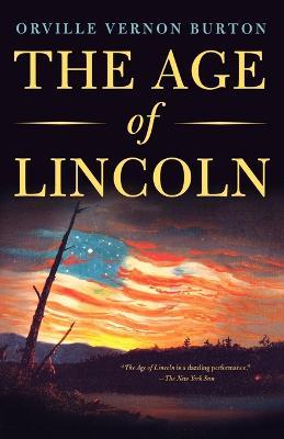 Age of Lincoln book