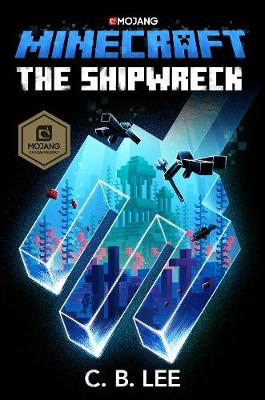 Minecraft: The Shipwreck book