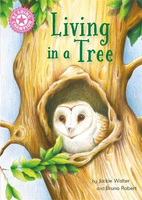 Reading Champion: Living in a Tree: Independent Reading Non-Fiction Pink 1a book