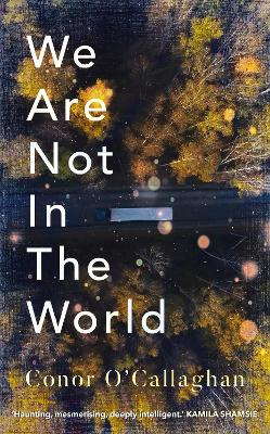 We Are Not in the World: 'compelling and profoundly moving' Irish Times by Conor O'Callaghan