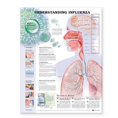 Understanding Influenza book