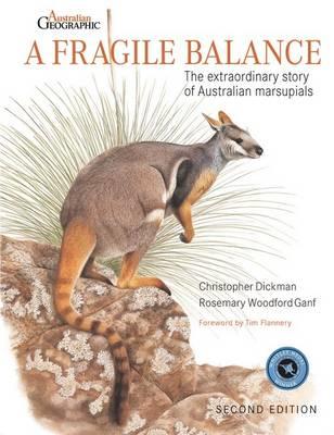 Fragile Balance by Christopher Dickman