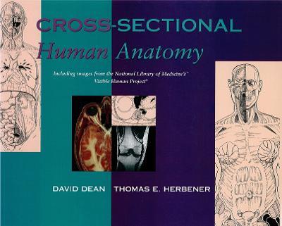 Cross-Sectional Human Anatomy by David Dean