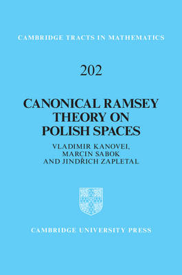 Canonical Ramsey Theory on Polish Spaces by Jindrich Zapletal