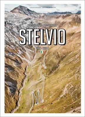 Porsche Drive: Stelvio by Stefan Bogner