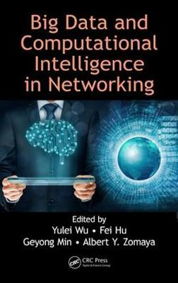 Big Data and Computational Intelligence in Networking by Yulei Wu