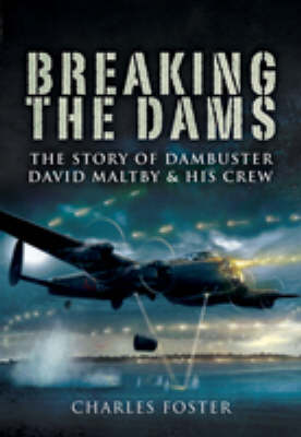 Breaking the Dams book