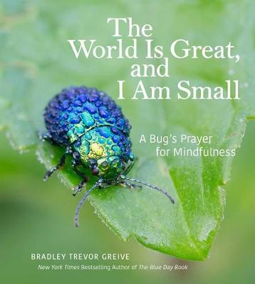 The World Is Great, and I Am Small by Bradley Trevor Greive