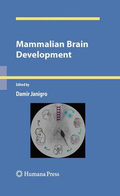 Mammalian Brain Development by Damir Janigro