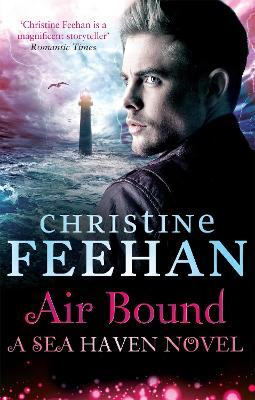 Air Bound book