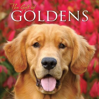 Gift of Goldens book