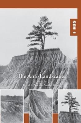 The Anti-Landscape by David E. Nye