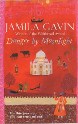 Danger by Moonlight by Jamila Gavin