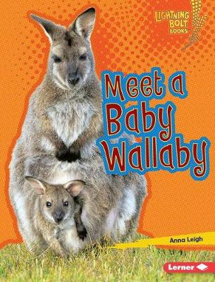Meet a Baby Wallaby by Anna Leigh