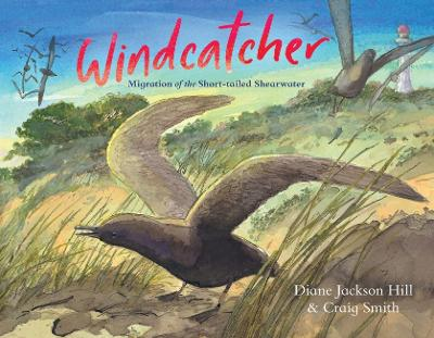 Windcatcher: Migration of the Short-tailed Shearwater by Diane Jackson Hill