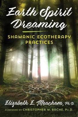 Earth Spirit Dreaming: Shamanic Ecotherapy Practices by Elizabeth E. Meacham