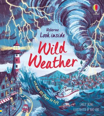 Look Inside Wild Weather by Emily Bone