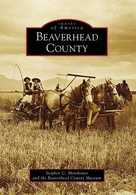 Beaverhead County book