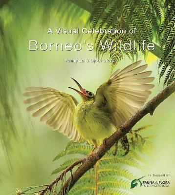 A Visual Celebration of Borneo's Wildlife by Fanny Lai