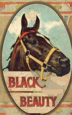 Black Beauty: Anna Sewell Blackbeauty Book Childrens Classic book