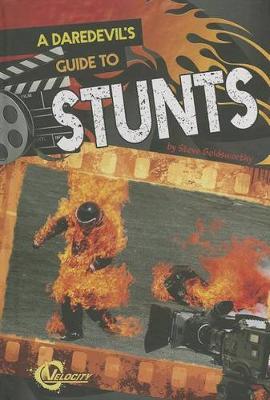 Daredevil's Guide to Stunts book