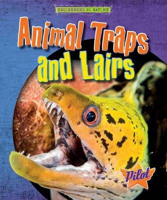 Animal Traps and Lairs by Louise And Richard Spilsbury