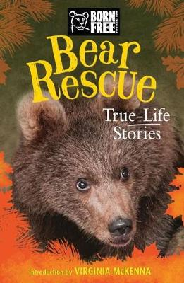 Bear Rescue by Jess French