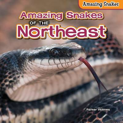 Amazing Snakes of the Northeast by Parker Holmes