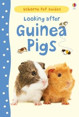 Looking After Guinea Pigs by Laura Howell